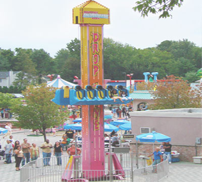 vertical drop ride for sale